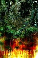 Rain Forest by GibbyGibson