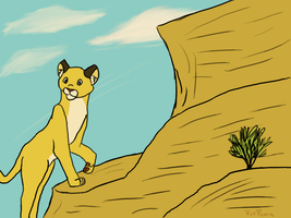 Mountain Lion by PvtPuma