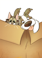 Happiness is a full box by khalamithy