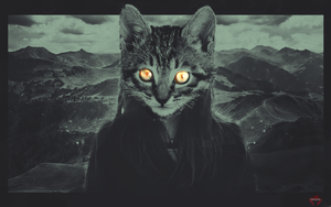 (her name) is CAT by Xeins