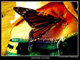 Mother Nature-713 by studio713