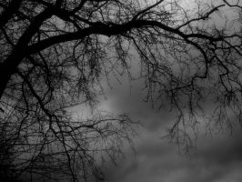 Dismal by theshadow223