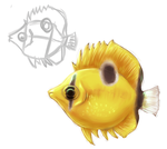 Bank Butterfly Fish by purplerubyred