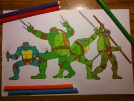Teenage Mutant Ninja Turtles by Elizabeth9330