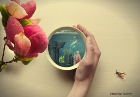 Little World by PocColino