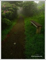 A Thoughful Place by TRBPhotographyLLC