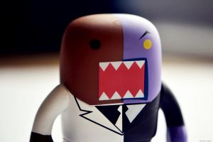 Two Face Domo by WickedOwl514