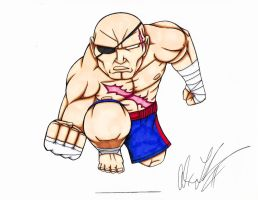 Street Fighter's Sagat by toonartist