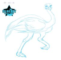 Animal of the Day: Ostrich by Silberry