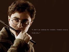 Harry Potter Quote by NoMercy68