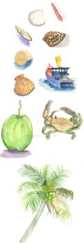 Watercolor Practice - Objects by HikumiRin