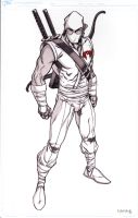 storm-shadow again by tillman54