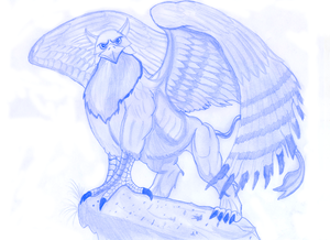 Gryphon sketch