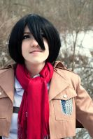 winter photo attack on titan 1 by superjacqui