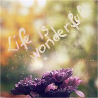 Life is wonderful by iNeedChemicalX