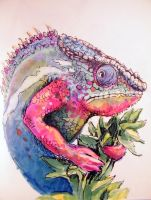 Chameleon Sketch by Caustic-Substrate