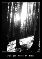 Into the woods of Belial by schaerban