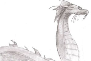 Dragon Sketch by Perpetualwolfsage