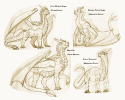 Tarkaria: Western Dragon Species Sample by vcubestudios