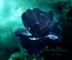 The Blue Dream by Callu