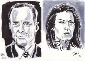Agents of S.H.I.E.L.D. by Simon-Williams-Art