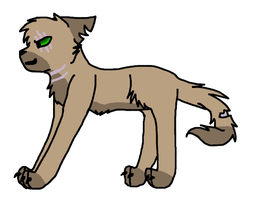 Dark Forest Cat for Collab by warriorwolf12345