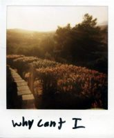 why cant i ? by cantrembrto4getu