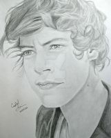 Harry Styles by Crystal-Cat