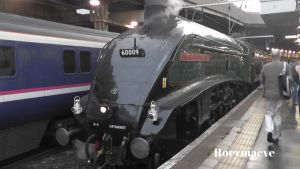 LNER 60009 'Union of South Africa' at Euston by The-Transport-Guild