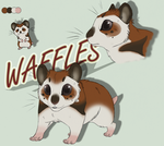 Waffles REF SHEET by KasaraWolf