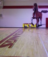PCM HS Gym - Wall number two by thecymbalwench