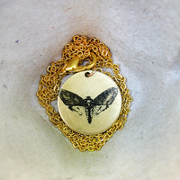 Brass Death Head Moth Illustration Necklace A. by Thecreakyattic