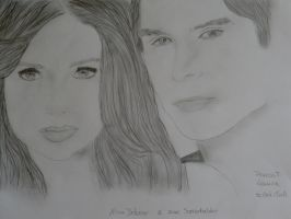 The vampire diaries by Prevost-laura