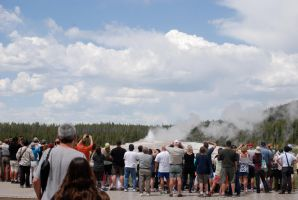 Waiting for Old Faithful by MNgreen