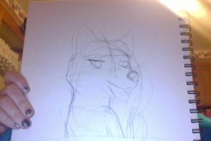 fcn badge very quick sketch by firestar0630
