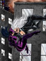 Black Cat vs Catwoman by DW-DeathWisH