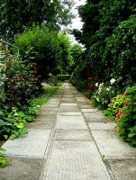 Path in the green by CarmenTheRiddLer