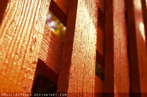 Wooden Through by muslim2proud