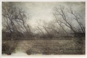 iPhoneography,  In the Face of the Wind by Gerald-Bostock