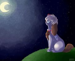 CP:: the Princess and the Moon. by coffaefox
