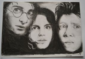 Harry, Hermione and Ron by PBeata