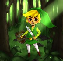 The Legend of Zelda: Toon Link by cannorachan