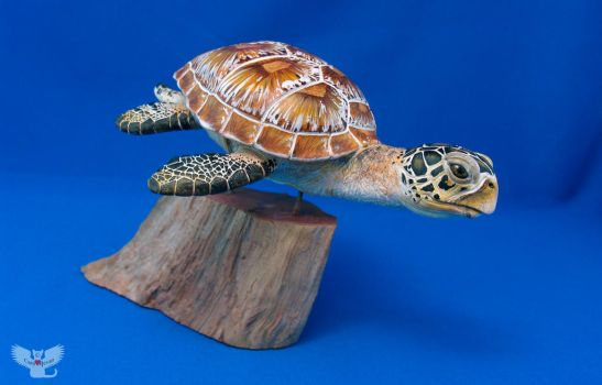 Gourd Sea Turtle HR5 by ART-fromthe-HEART