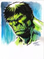 HULK AGAIN by jerkmonger
