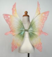 Fairy Wings - Child Flower Fae by glittrrgrrl