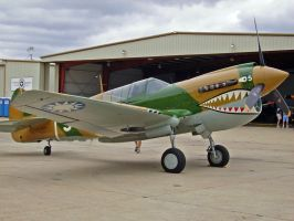 P-40N Warhawk II by DarkWizard83