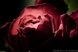 Glowing Red by g2k556