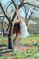 Dance of spring 02 by DominaWhite