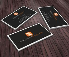 Pinpoint Designs Business Card by Pinpoint-Designs