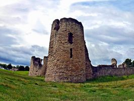 Flint Castle North Wales by friartuck40